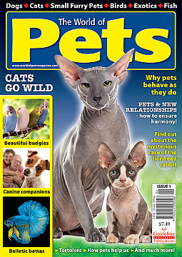 Guideline Publications World of Pets  Issue 1